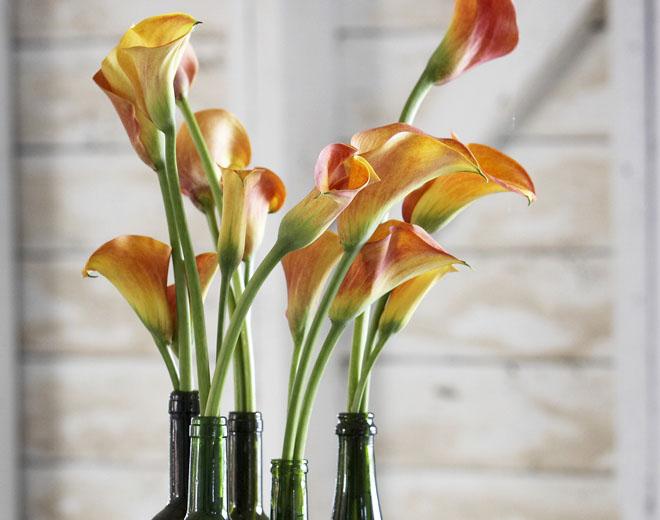 Fleurs en Entreprise